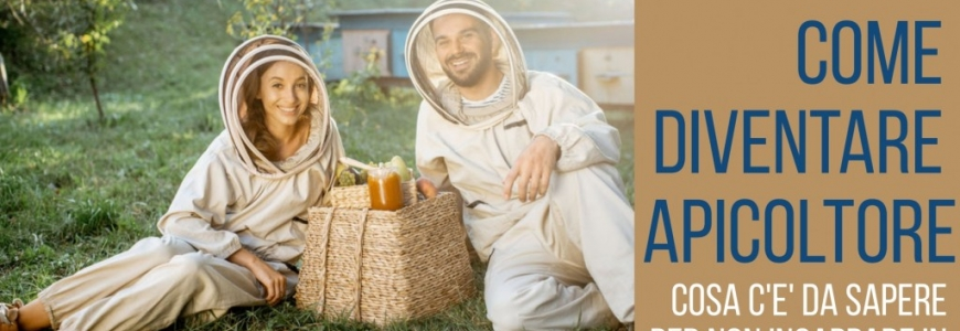 How to become a beekeeper and what to do to get closer to the world of beekeepin